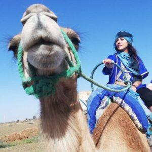 budget travel. tips 11 - book a camel tour on airbnb experience