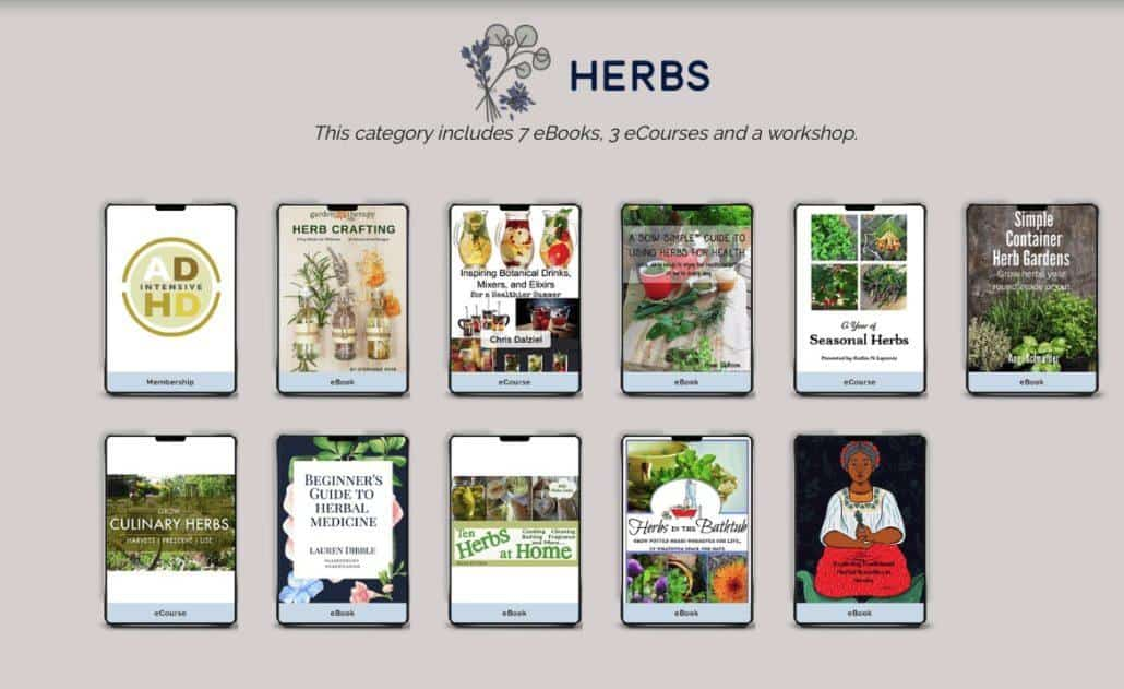 how to grow herbs indoors bundle