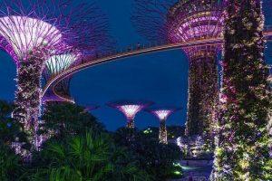 singapore digital nomad.