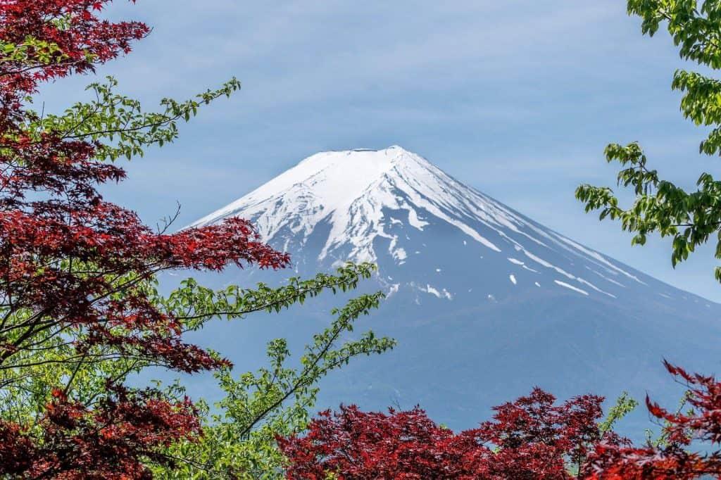 COLIVING JAPAN