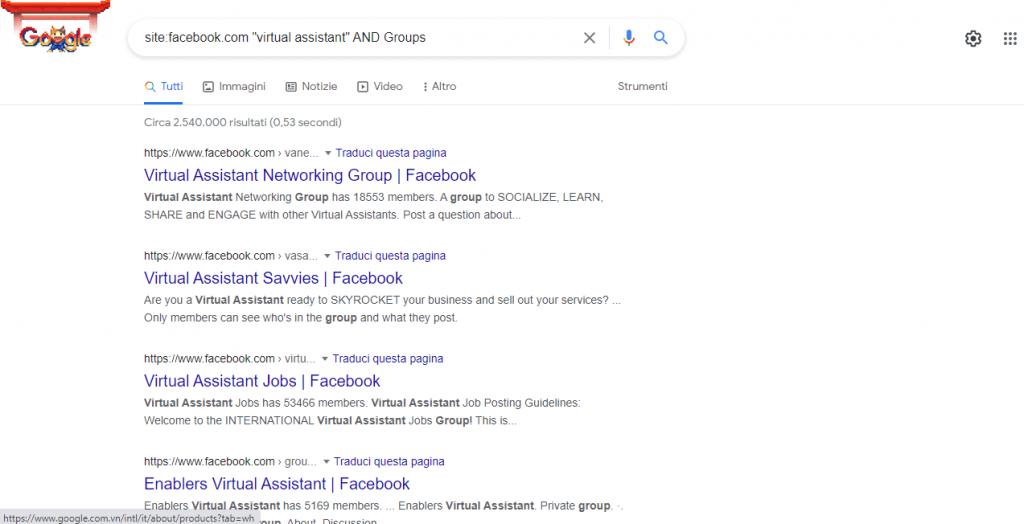 Virtual Assistant Profile sample