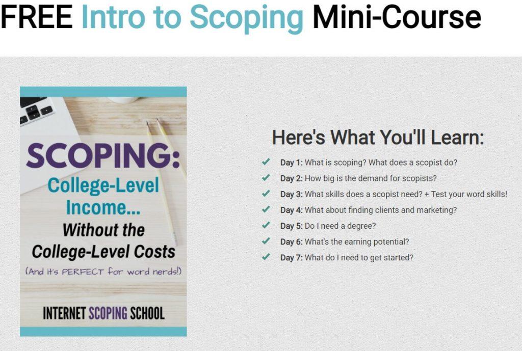 Free scopist training