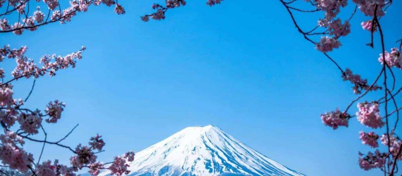 teach English online to Japanese